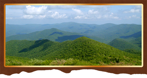 Brasstown Bald Trails